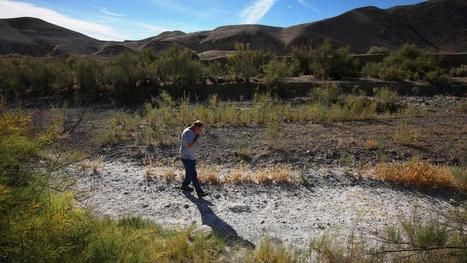 Amid California's drought, a bruising battle for cheap water | Sustainability Science | Scoop.it