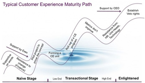 Customer Experience Governance Approaches & Maturity Stages | Designing  service | Scoop.it