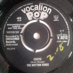 The Exotic Rhythm Kings | WNMC Music | Scoop.it