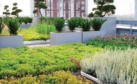 En France, les toits des nouveaux centres commerciaux devront être végétalisés | IMMOBILIER 2015 | Scoop.it