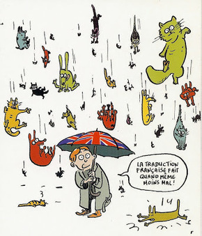 English 4 Frogs: Expressions idiomatique n°6: It's raining cats and ... | English corner | Scoop.it