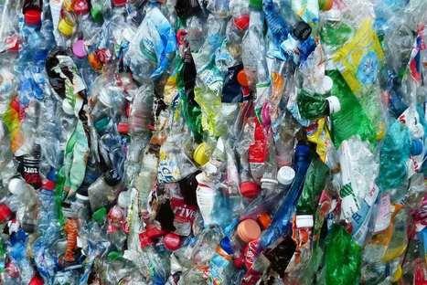 Een wereld zonder plastic is dichterbij dan je denkt   Biologie in de klas   Scoop.it