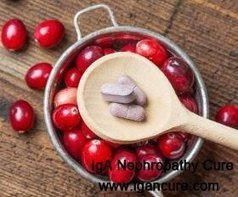 Is It Safe for Nephrotic Syndrome Patients to Take Cranberry Pills_IGA Cure   igancure.com   Scoop.it