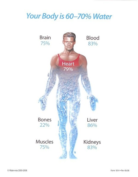 Significance of water to the human body - HealthyLife.PK   Supplements In Pakistan   Scoop.it