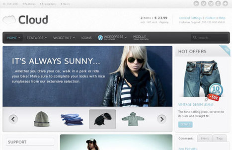 Wordpress Theme Ecommerce | Time to Learn | Scoop.it