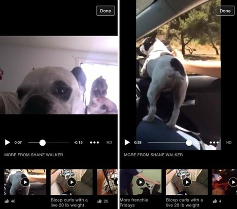 Facebook Tries Being A TV Channel With New Mobile Video Player | TechCrunch | screen seriality | Scoop.it