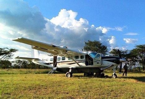 Flying Safaris   Serengeti Safari   Scoop.it