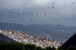 EU takes Italy back to court over illegal landfills — EUbusiness.com - EU Business News | Global Recycling Movement | Scoop.it
