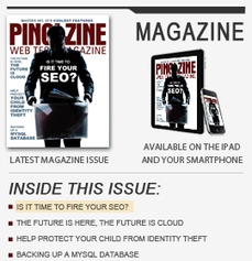 Making Your SEO Strategy a Continuous Effort - Ping! Zine Web Tech Magazine | Blogging Tips | Scoop.it