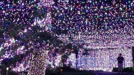 Australian Family Set New Guinness Record with 502,165 Christmas Light Installation | Strange days indeed... | Scoop.it
