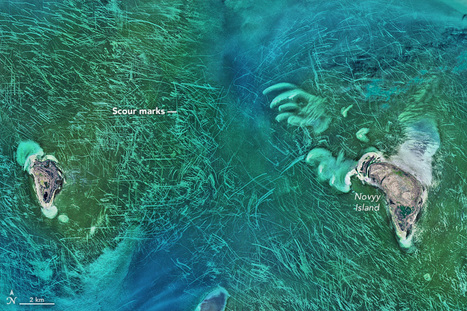 Ice Scours the North Caspian Sea | Conformable Contacts | Scoop.it