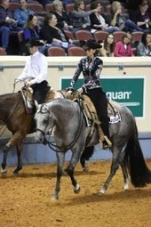 Extension at All Gaits: AQHA asking for lengthened strides in western pleasure classes | PleasureHorse.com | Pleasure Horse | Scoop.it