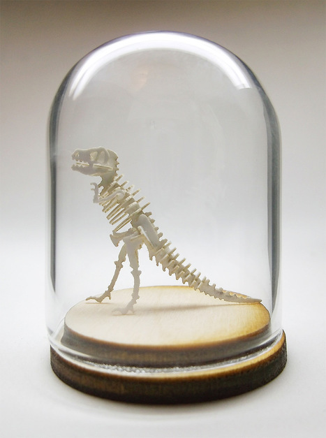 Miniature DIY Paper Skeleton Kits by Tinysaur | Heron | Scoop.it