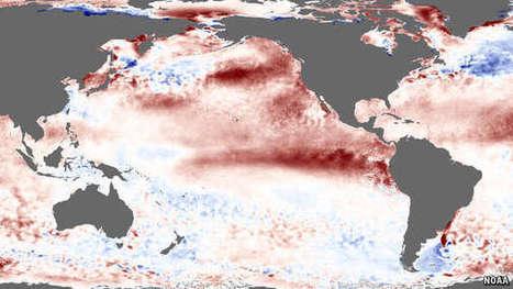 What is El Niño?   IB Geography ISB   Scoop.it