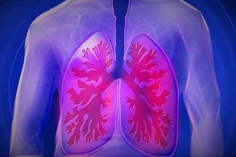 Why Lung Cancer Screening Can Be Lifesaving   Via Radiology   Scoop.it