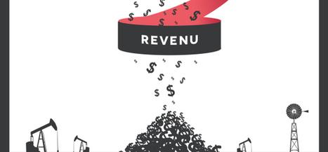 Growth Hacker Soignez Votre Revenu | Growth hacking & Social Marketing | Scoop.it