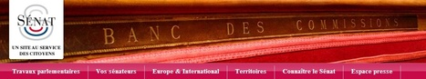Archives du Sénat - Procès-verbaux et rapports des commissions de la 1ère Guerre mondiale| Sénat.fr | Nos Racines | Scoop.it