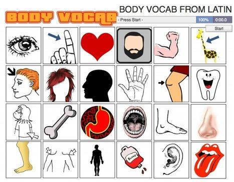 BODY VOCAB FROM LATIN | Docencia de las lenguas clásicas | Scoop.it