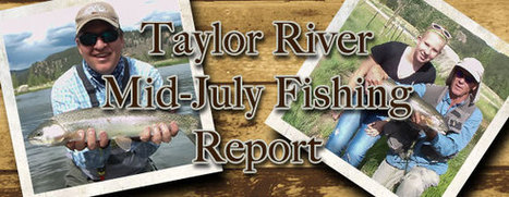 Wilder on the Taylor Fishing Report for Mid-July 2013 | Fly Fishing | Scoop.it