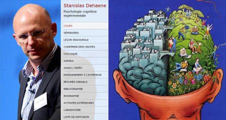 Neurosciences et Apprentissage: Stanislas Dehaene | Espace Pédagogique FLE | Scoop.it