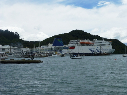 Picton, das Tor zur Südinsel Teil 1 › Weit weg Reisen   Newzealand   Scoop.it