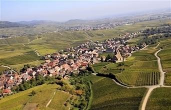 Le vignoble alsacien ouvre le chantier de la hiérarchisation des ... - L'Alsace.fr | Actualités d'Alsace | Scoop.it