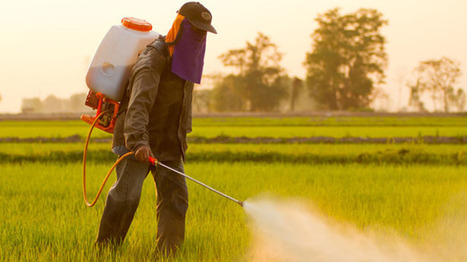 "#Monsanto's #Roundup weedkiller ""may"" be causing kidney failure in farmworkers: #health 