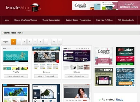 Know about professional wordpress themes available online | Professional Wordpress Themes | Scoop.it