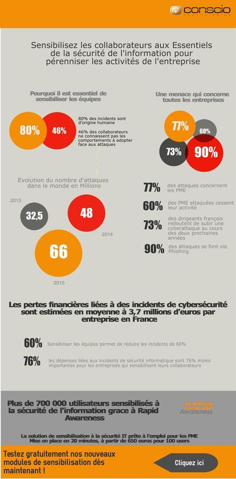 Infographie : comment se battre contre les attaques informatiques ? | Sécurité des services et usages numériques : une assurance et la confiance. | Scoop.it