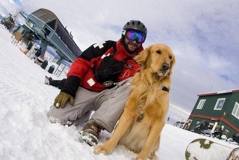 7 Ski & Snowboard Safety Tips  &  Live Travel Mountains   A Life Ascending - Ski Film   Scoop.it
