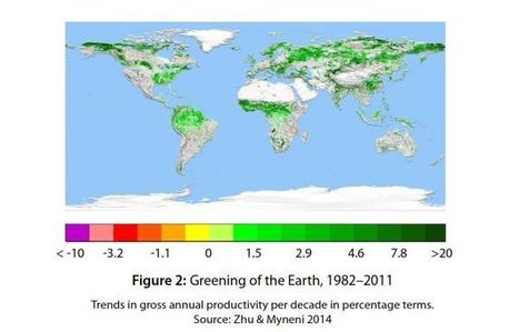 Study: increased carbon dioxide is greening deserts globally | Liberty Revolution | Scoop.it