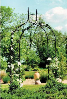 amazon coupon 10% on Arbor | lovely savings | Scoop.it
