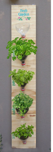Hanging herb garden | Make stuff | Scoop.it