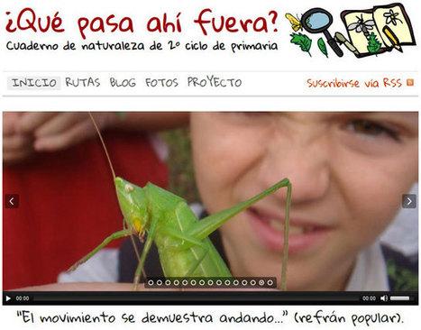 Actividad PLE 4.2 | Educacion, ecologia y TIC | Scoop.it
