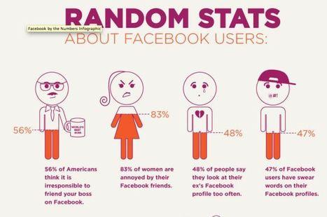 #DATA - Facebook INFOGRAPHIC 2011: Top 5 stats - Online Social Media | Data #TBD | Scoop.it