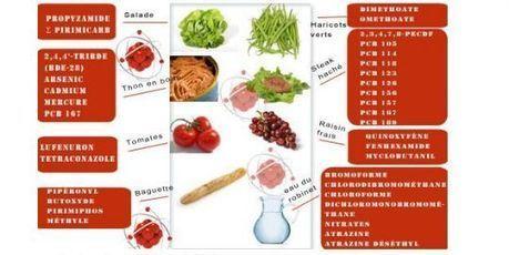 Près de 80 substances chimiques dans les repas quotidiens d'un enfant   Indigné   Scoop.it