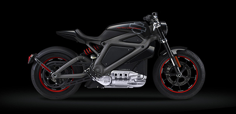Harley-Davidson attends sustainability conference | Powersports Business | Harley Rider News | Scoop.it