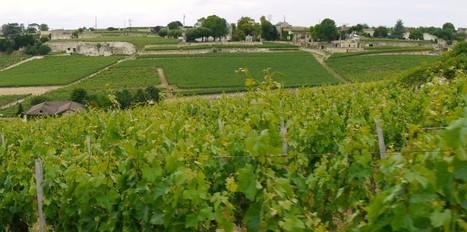Des milliardaires chinois créent leur société de négoce de vins bordelais | Vin 2.0 | Scoop.it