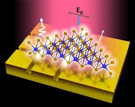 New method to improve photoluminescence efficiency of 2-D semiconductors | Amazing Science | Scoop.it
