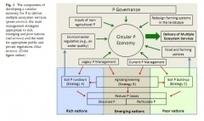 Propositions pour une économie circulaire autour du phosphore   Innovation Agro-activités et Bio-industries   Scoop.it