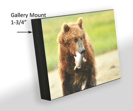 Gallery Mount in Ottawa Shipping to Toronto, all Canada and USA | Germotte Photo and Framing Studio | Scoop.it