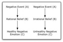 Rational Emotive Behaviour Therapy | Neuroscience and Psychology | Scoop.it