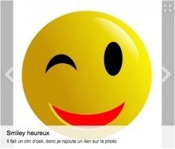 NetPublic » Mise à jour(nalisme) : blog pratique sur les outils numériques et la méthodologie pour informer | François MAGNAN  Formateur Consultant | Scoop.it