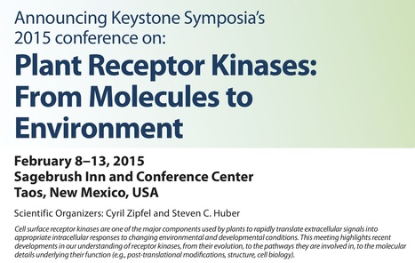 Keystone Symposia Conference: Plant Receptor Kinases: From Molecules to Environment, February 8—13, 2015, Taos, New Mexico | Plants and Microbes | Scoop.it