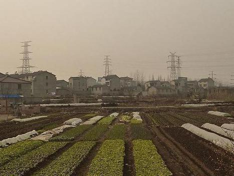 China's artificial 'nuclear winter' wrecking havoc on agriculture | Sustainable Technologies | Scoop.it