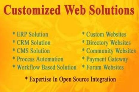 Affordable Web Development & Web Solution Company India | Web Development Solutions Services India | Scoop.it