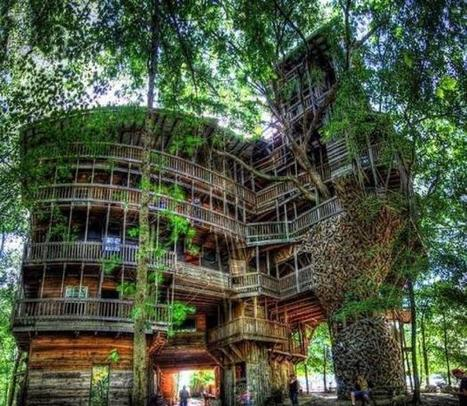 Horace Burgess (in Tennessee) built a tree house, with a whopping 1,000 square meters (nearly 11,000 square feet) and standing 90 feet tall! It took fifteen years. | Nature | Scoop.it