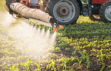 California Slaps Health Warning Label on Popular Weed Killer | GMOs & FOOD, WATER & SOIL MATTERS | Scoop.it