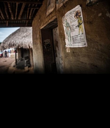 Ebola epidemic : Nature News & Comment   Virology News   Scoop.it
