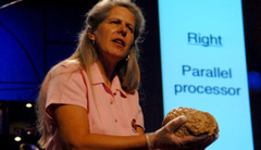 12 talks on understanding the brain | TED Blog | Cognitive Fitness and Brain Health | Scoop.it